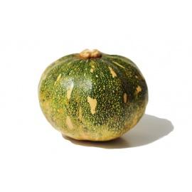 Pumpkin (Nsujjuu)