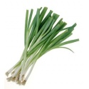 Fresh Bunched Spring Onions 100g