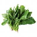 Fresh Spinach 200G