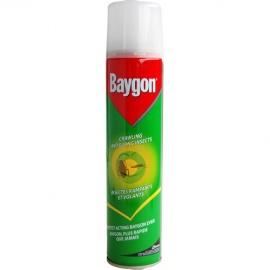 BAYGON INSECTICIDE (300ML)