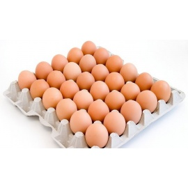 1x30 eggs  White York Full Tray
