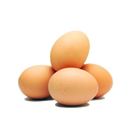 Loose Eggs