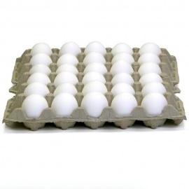 1X30 Local Eggs Tray (Yellow Yolk)