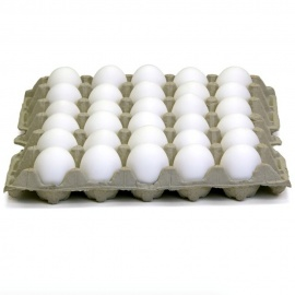 1X30 Local Eggs Tray (Yellow Yolk)