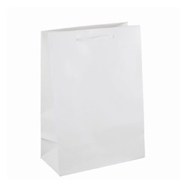 Gift Carry Bag Medium White
