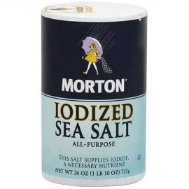 Morton Salt Iodised 737G