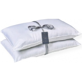 Two pack Hollow Fiber Pillows