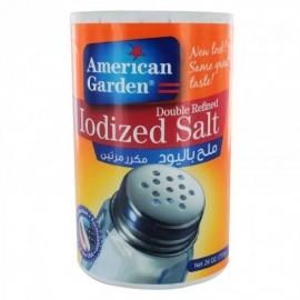 American Garden  Iodized Salt 510g