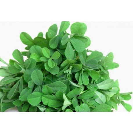 Fresh Fenugreek Leaves 300g