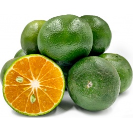 Local Green Oranges / kilo gram