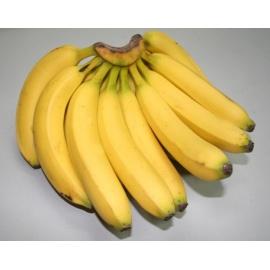 Yellow Uganda Banana (Bogoya) / Cluster