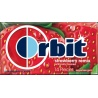 ORBIT PRO'MINTS MIXED BERRY 18G